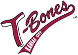 Kansas City T-Bones - 2014 Kansas City WordCamp In-Kind Sponsor