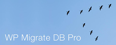 WP Migrate DB Pro - WordCamp Kansas City 2014 Sponsor