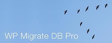 WP Migrate DB Pro - WordCamp Kansas City 2014 Sponsor